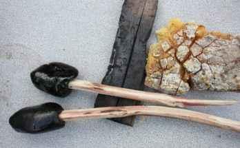 colla resina di pino