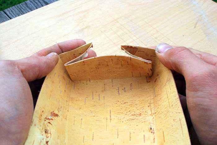 piegare corteccia di betulla
