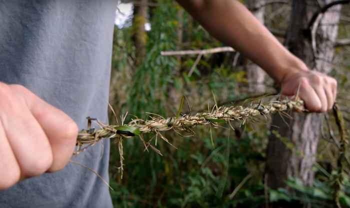 Corda d'erba