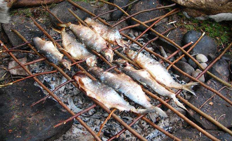 fuoco cottura cibo