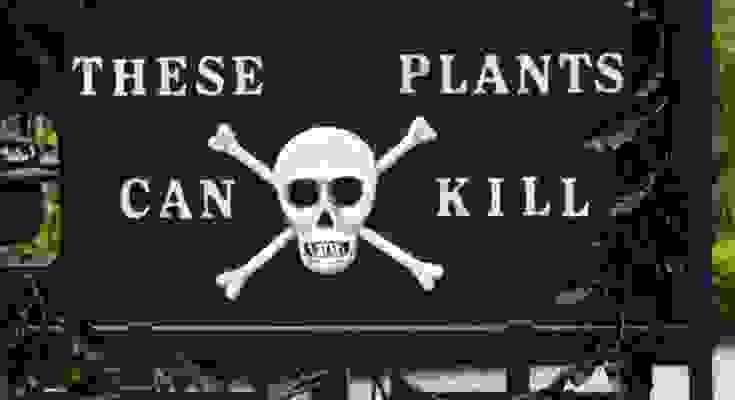 test piante velenose