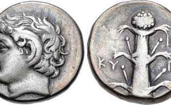 Moneta di Cirene che rappresenta la pianta di silfio