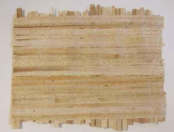 Foglio di papiro a doppio strato