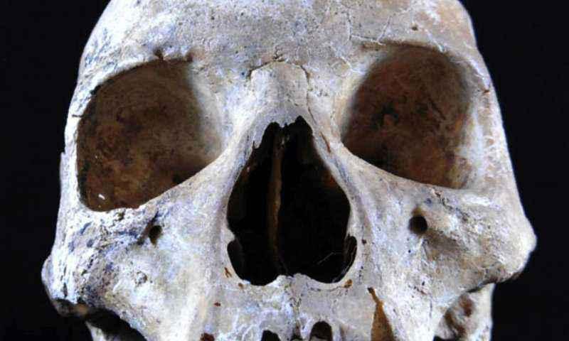 Cranio della Donna di Hoxne