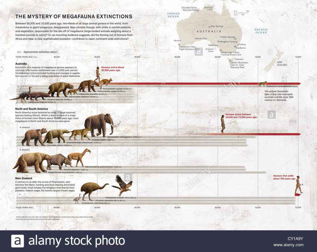 Cronologia dell'estinzione della fauna del Pleistocene