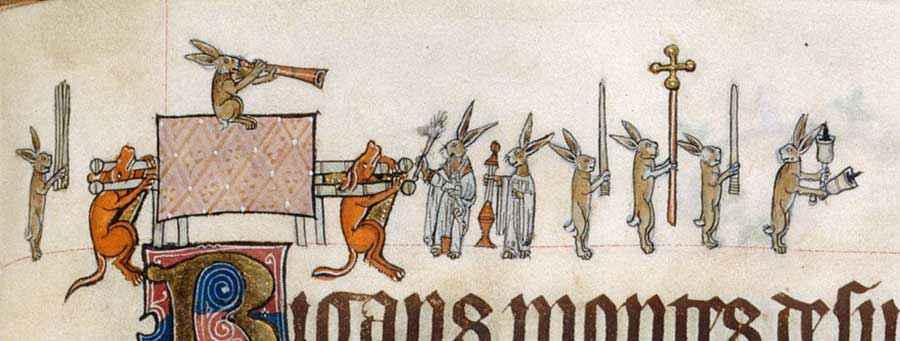 Processione di conigli