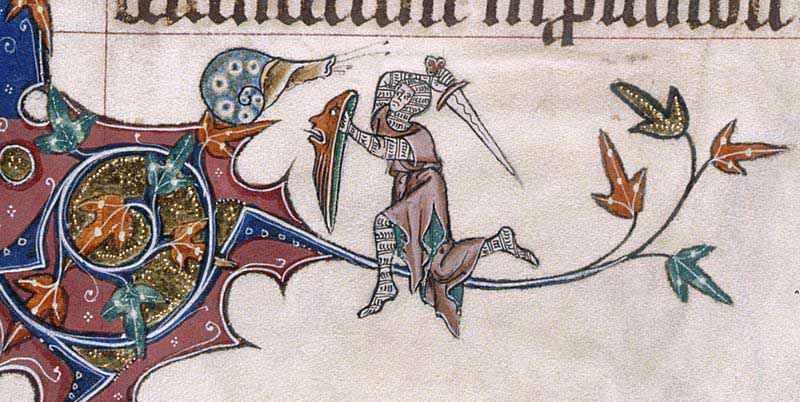 Cavaliere contro lumaca