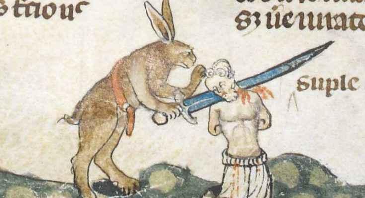 Conigli assassini