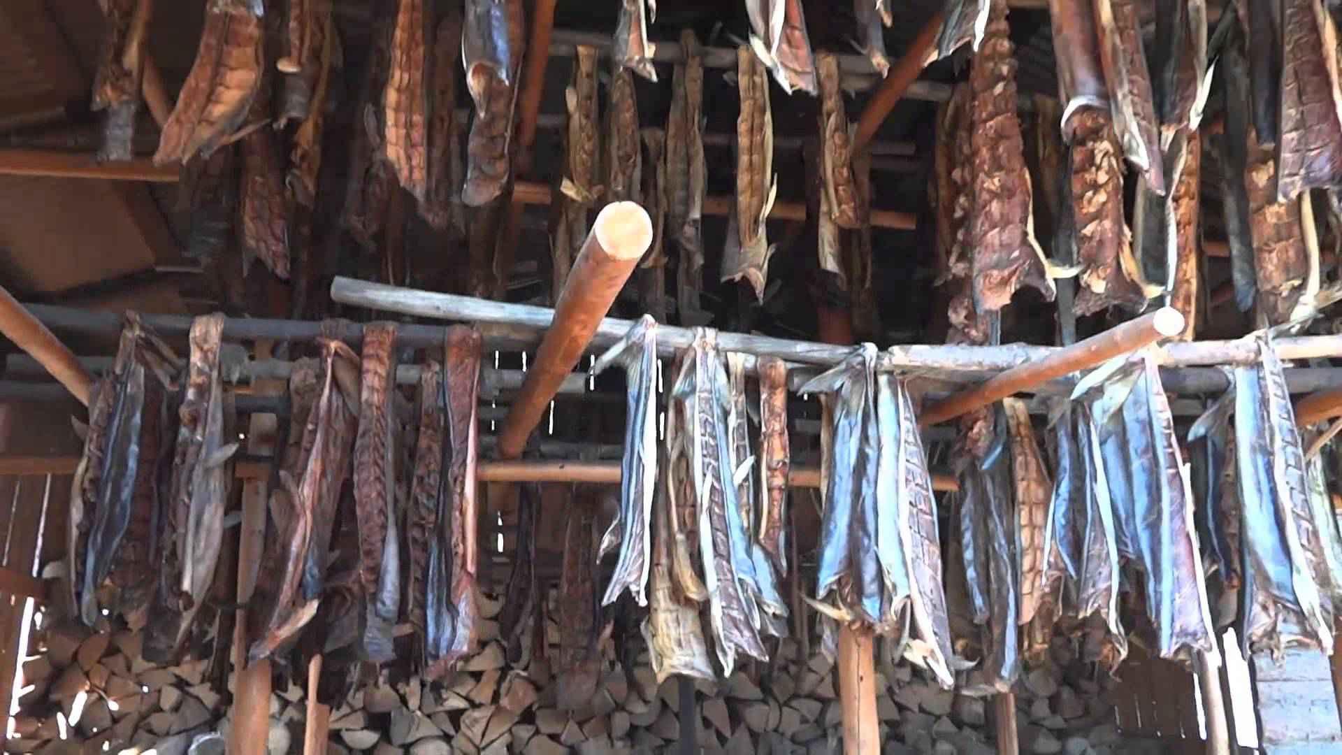 Come si conservava il cibo in antichità?