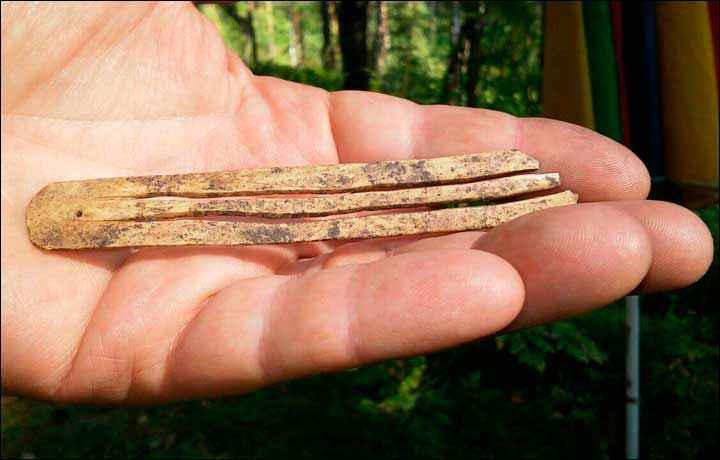 Lo scacciapensieri in osso, ancora funzionante, scoperto da Borodovsky