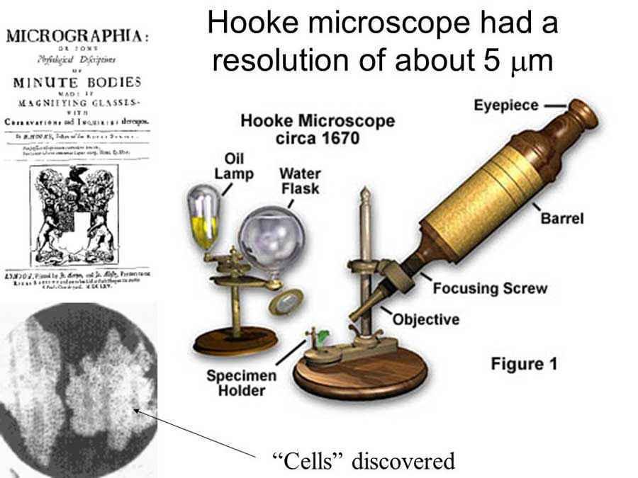 Struttura del microscopio di Hooke