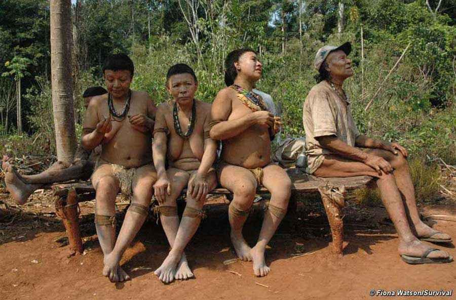 Gli ultimi 5 esponenti della tribù Akuntsu rimasti in vita dopo il massacro del loro popolo