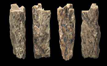 Denny, ibrido neanderthal e denisova