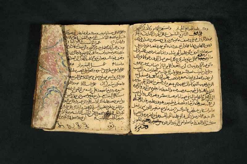 Pagine dal Kitab al-Tabikh