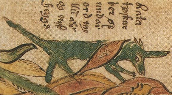 Ratatoskr, lo scoiattolo rosso dela tradizione norrena
