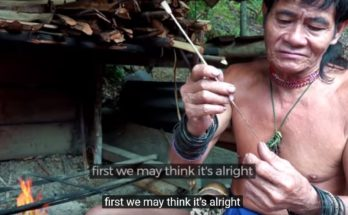 Documentario - Borneo Death Blow: i Penan