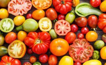 Storia del pomodoro
