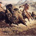 Caccia al bisonte