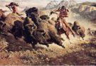 La realtà della caccia al bisonte dei nativi americani