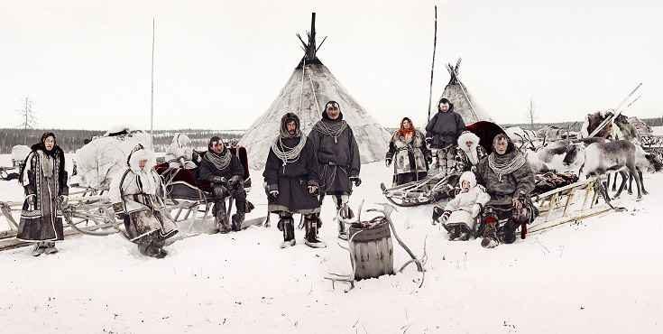 Dall'allevamento di renne i Nenci e i Komi ottengono la malica, la tipica pellicia di renna che usano per costruire le loro tende, chiamate choom o tchum.