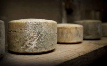 Come si produceva il formaggio in antichità?