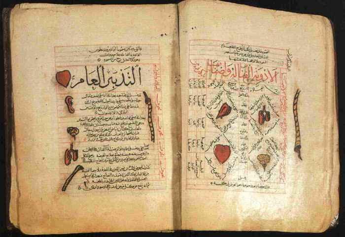 Canone della Medicina di Avicenna