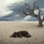 Cambiamento climatico nell'antichità