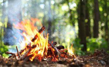 Fuoco da campo: origine, costruzione e precauzioni