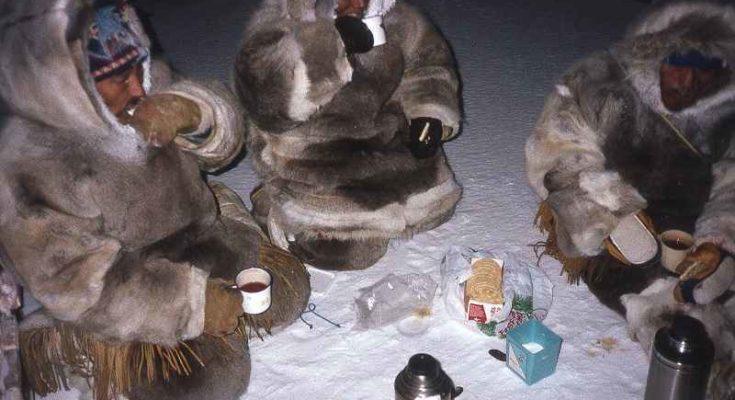 Il paradosso alimentare degli Inuit