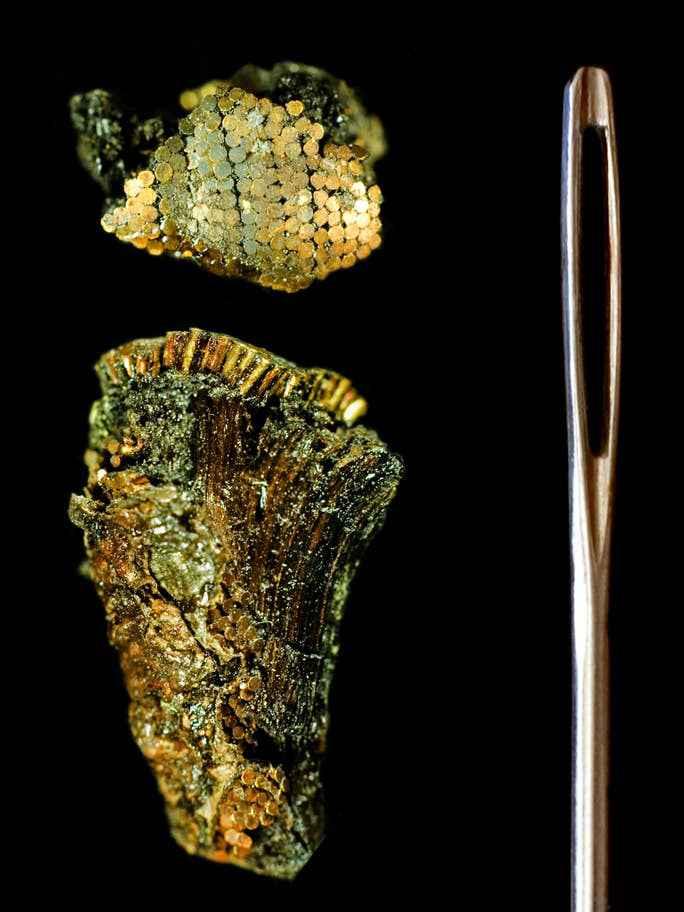 Frammento dell'impugnatura della daga di Bush Barrow a confronto con la cruna di un ago