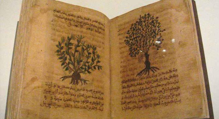 De Materia Medica di Dioscoride Pedanio
