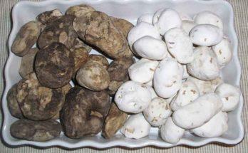 Chuño, le patate liofilizzate degli Inca
