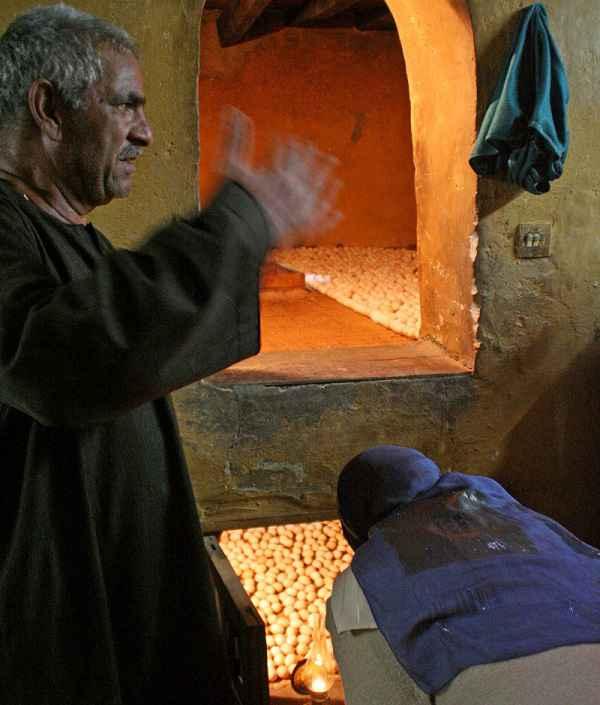 Incubatrice per uova egiziana basata sull'antico design