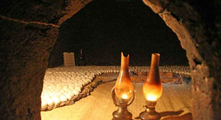 Incubatrici per uova in Egitto